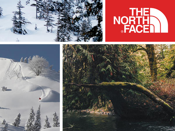 自然と共に歩んできたノースフェイス/North face