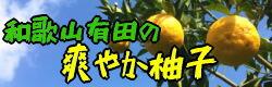 爽やか柚子