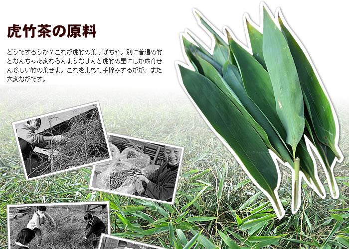 虎竹茶の原料