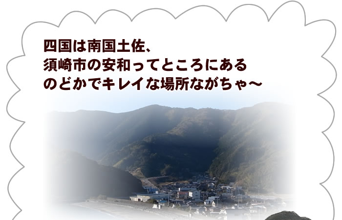 須崎市の安和ってところののどかできれいな場所