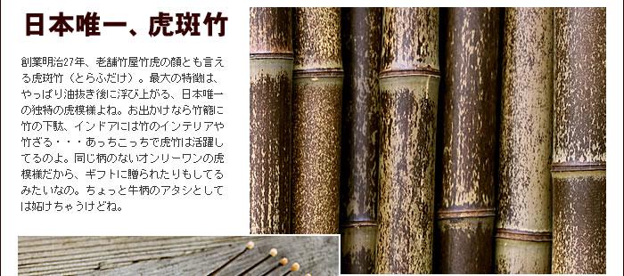 日本唯一、虎斑竹