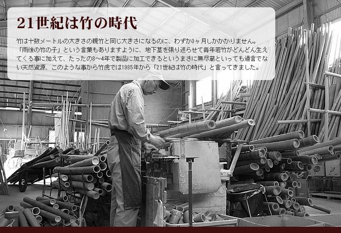 21世紀は竹の時代