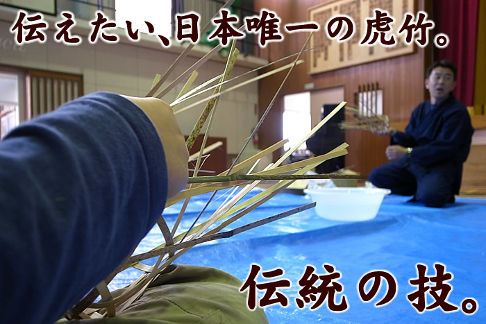 伝えたい、日本唯一の虎竹。