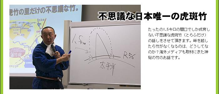 不思議な日本唯一の虎斑竹