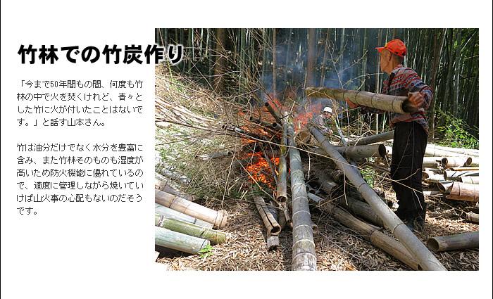 竹林での竹炭作り