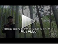 久米さん×日本唯一の虎竹林