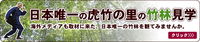 虎竹の里への道順