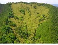 空中散歩、虎竹の里