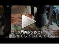 竹皮草履用の稲ワラ作り
