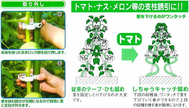 取り外し本体をもったままロック部を指で押します。茎をはさむ部分が全開になるので容易に茎と支柱を外せます。