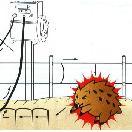 電気柵セット