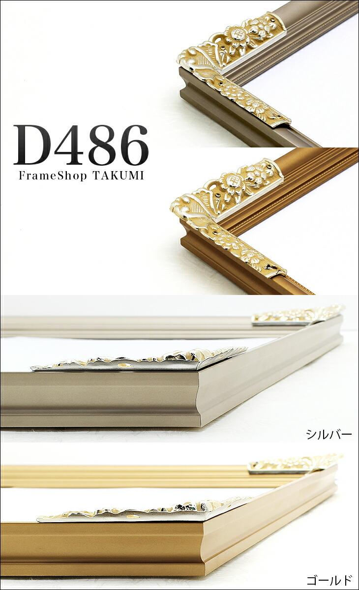 D486タイトル画像