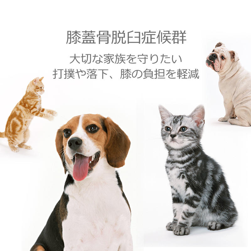 Takumisofa For Dogs Amp Cats Pet Steps Step Move And