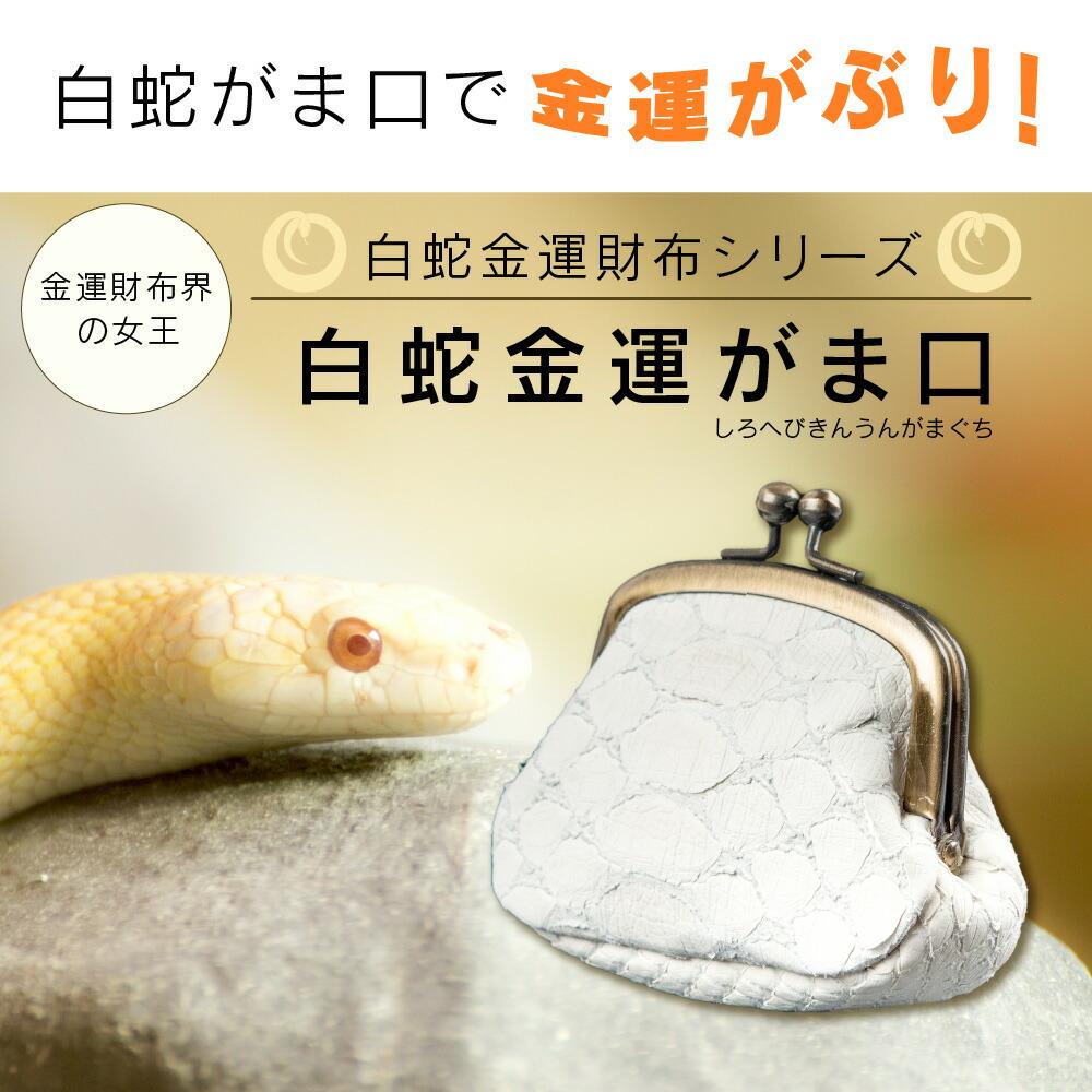 ヘビ 丸呑み