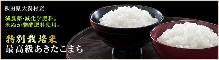 秋田県大潟村産特別栽培米最高級あきたこまち