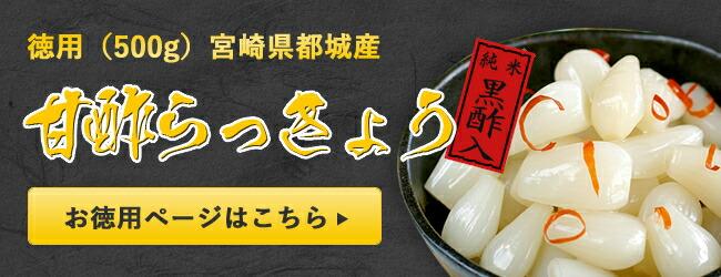 たね坊の甘酢らっきょう徳用500g