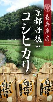 京都丹後のコシヒカリ