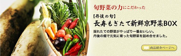 旬野菜の力にこだわった 【丹後の旬】長寿もぎたて新鮮京野菜BOX 採れたての野菜がやっぱり一番おいしい。丹後の畑で元気に育った旬野菜を詰め合せました。
