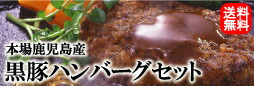 送料無料!本場鹿児島産黒豚ハンバーグセット