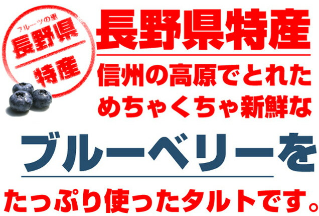 長野県特産のブルーベリー使用