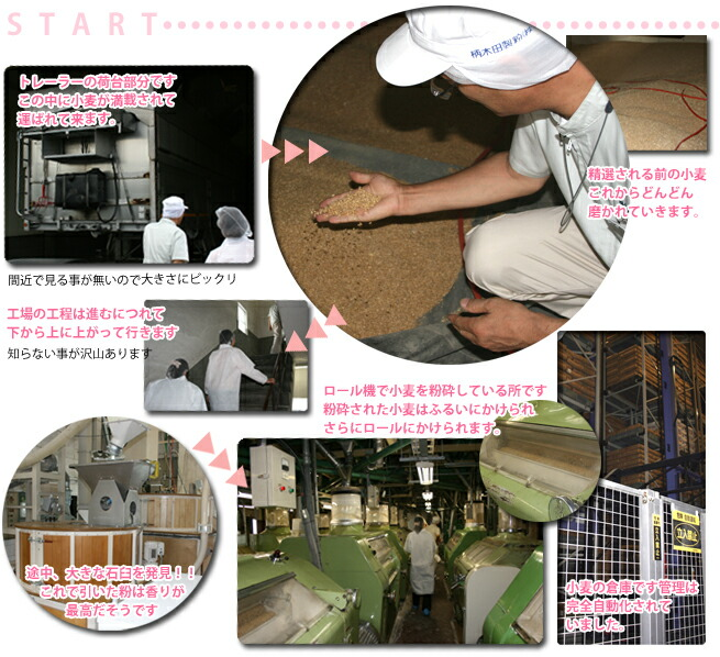 柄木田製粉株式会社様工場見学スタート