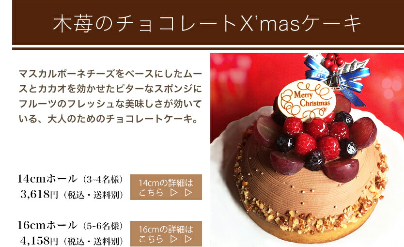木苺のチョコレートクリスマスケーキ