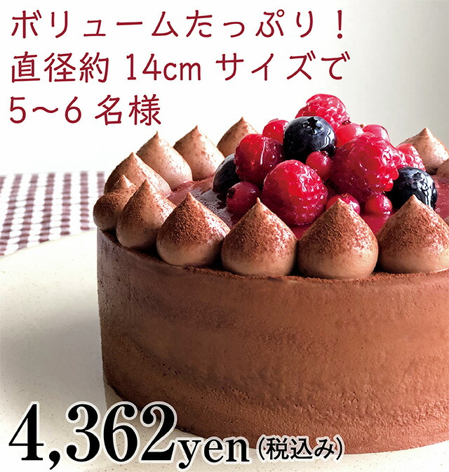 Xmas チョコレートケーキ with Crimson berry