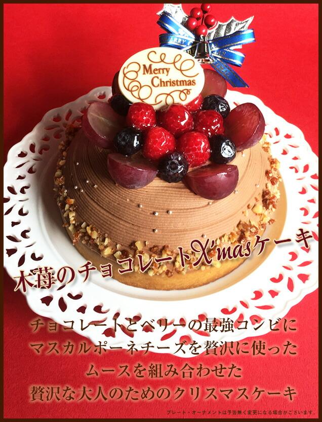 木苺のチョコレートXmasケーキ