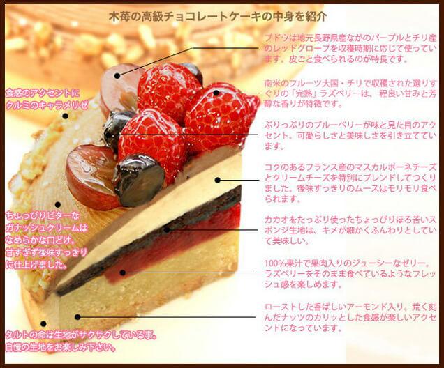 木苺のチョコレートXmasケーキの中身を紹介