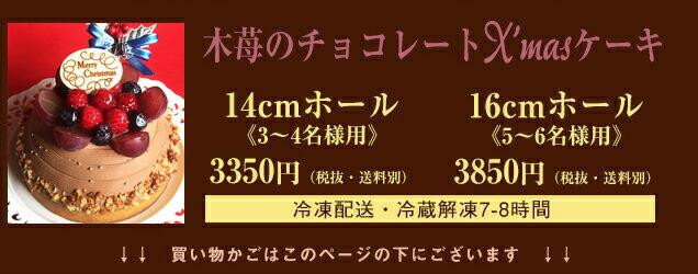 木苺のチョコレートXmasケーキの詳細