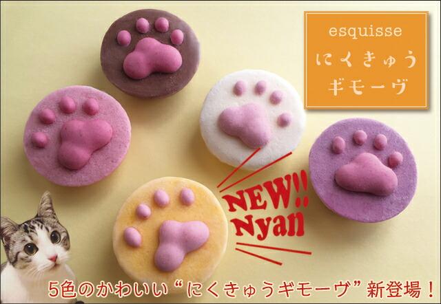 猫ちゃんの肉球ギモーヴ