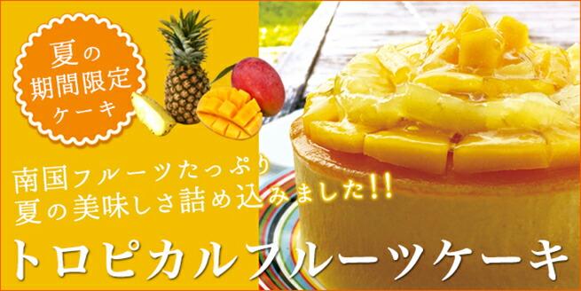 夏季限定 トロピカルフルーツケーキ