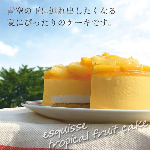 夏にぴったりのケーキです
