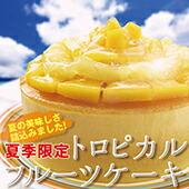 マンゴー パイナップル トロピカルフルーツケーキ