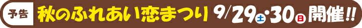 秋のふれあい恋まつり9/29、30開催