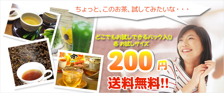 お試し200円