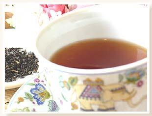 ダージリン紅茶 ダージリンマスターブレンド カップ