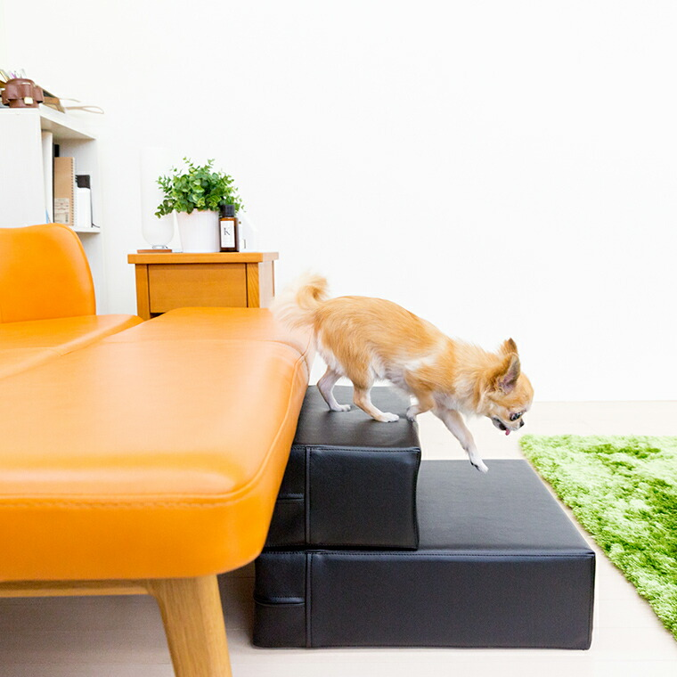 犬用 階段