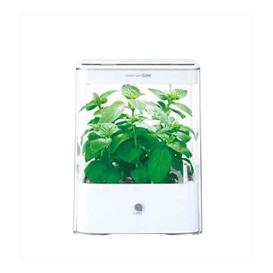 【送料無料】グリーンファーム キューブ UH-CB01G-W ホワイト 水耕栽培器 ユーイング