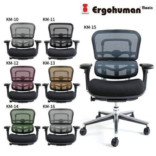 エルゴヒューマン ベーシック EH-LBM モールドクッション座面 ロータイプ Ergohuman Basic【組立必要】【代引き不可】