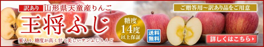 天童産王将ふじ 蜜入り!甘く美しいサンふじりんご