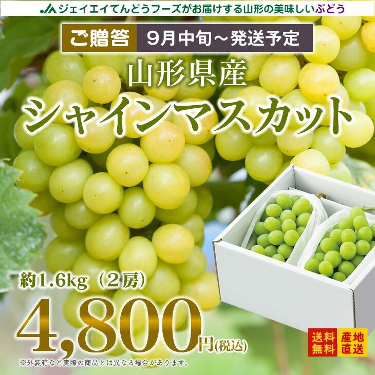 【ギフト用】<BR>山形県産シャインマスカット<BR>2房入り(約1.6kg)