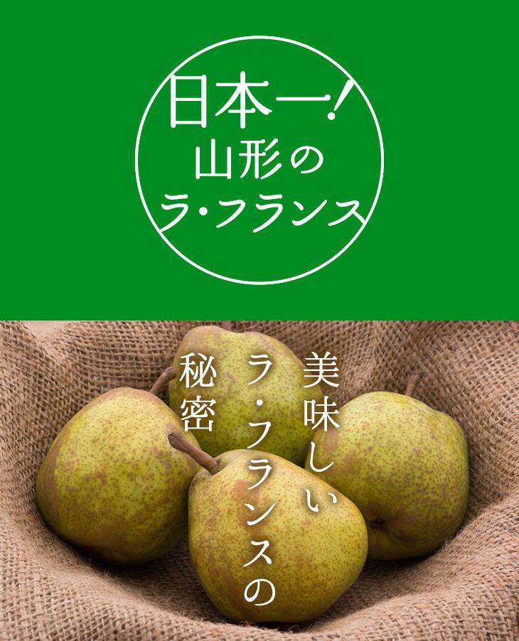 日本一山形のラ・フランス | 美味しいラ・フランスの秘密