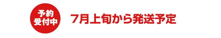 山形県産メロン 6月下旬から発送予定