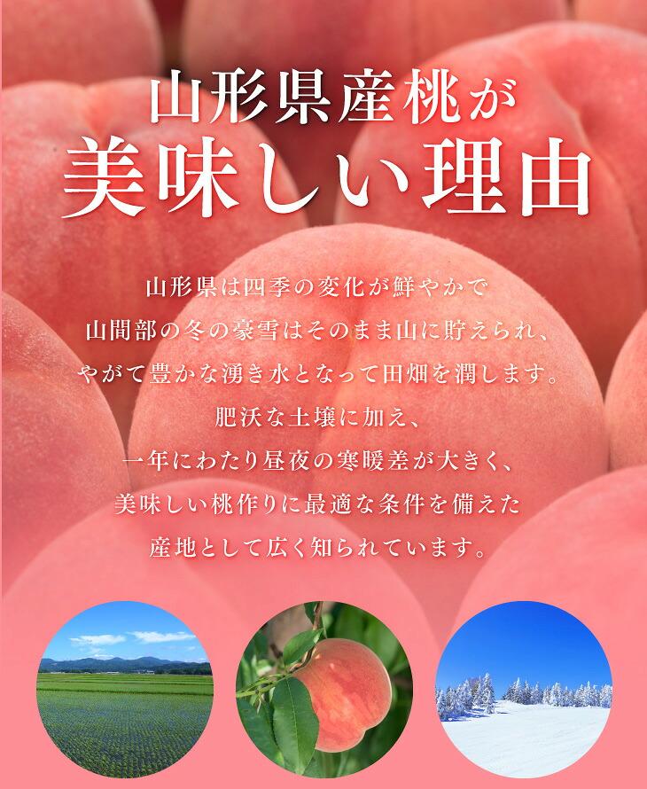 山形県産桃が美味しい理由 | 山形県は四季の変化が鮮やかで山間部の冬の豪雪はそのまま山に貯えられ、やがて豊かな湧き水となって田畑を潤します。肥沃な土壌に加え、一年にわたり昼夜の温度差が大きく、美味しい桃作りに最適な条件を備えた産地として広く知られています。