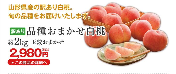 訳あり 品種おまかせ白桃