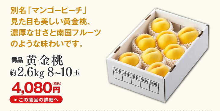 山形県産桃 黄金桃 | 別名「マンゴーピーチ」見た目も美しい黄金桃、濃厚な甘さと南国フルーツのような味わいです。