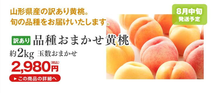 訳あり 品種おまかせ黄桃