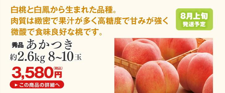 山形県産桃 あかつき 2.6kg | 白桃と白鳳から生まれた品種。肉質は緻密で果汁が多く高糖度で甘みが強く微酸で食味良好な桃です。