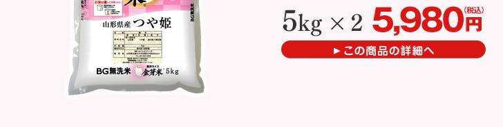 山形県産金芽米 つや姫精米5kg×2